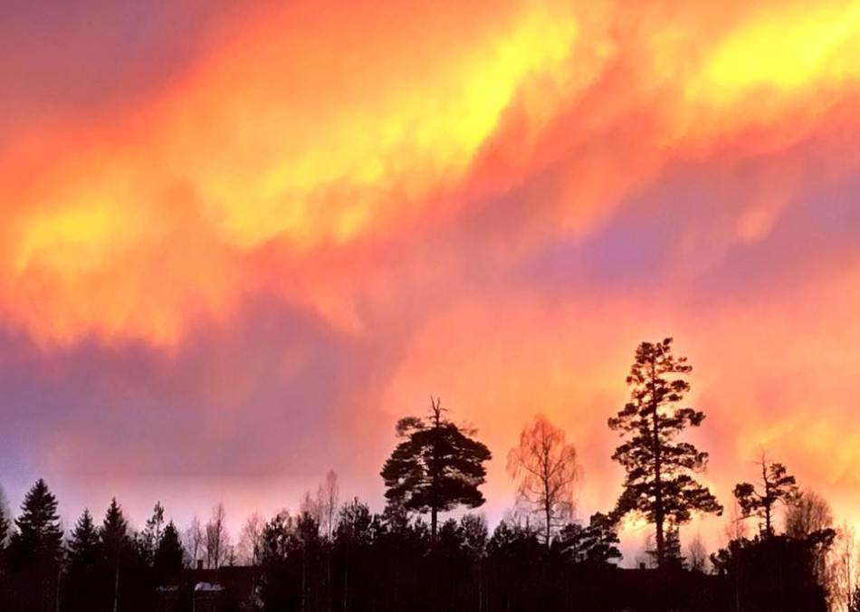 solnedgang-vinter