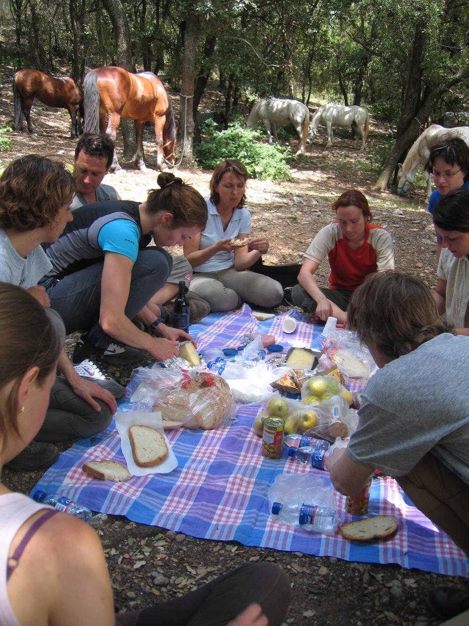piknik-035