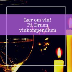 Lær om vin på video! På Druen vinkurs (1)