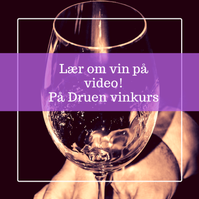 Lær om vin på video! På Druen vinkurs (4)