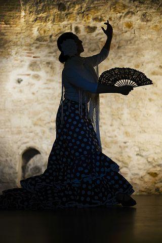 flamenco-1046485__480