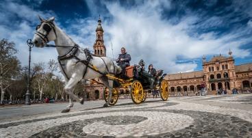 Hestedrosjer er et trivelig syn i Sevillas trange gater, og en fin og miljøvennlig måte å oppleve byen på. Men sjekk at hesten får godt stell og har det bra!