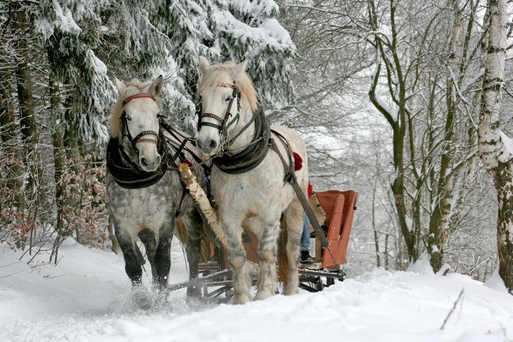 sleigh-ride-549727_1280
